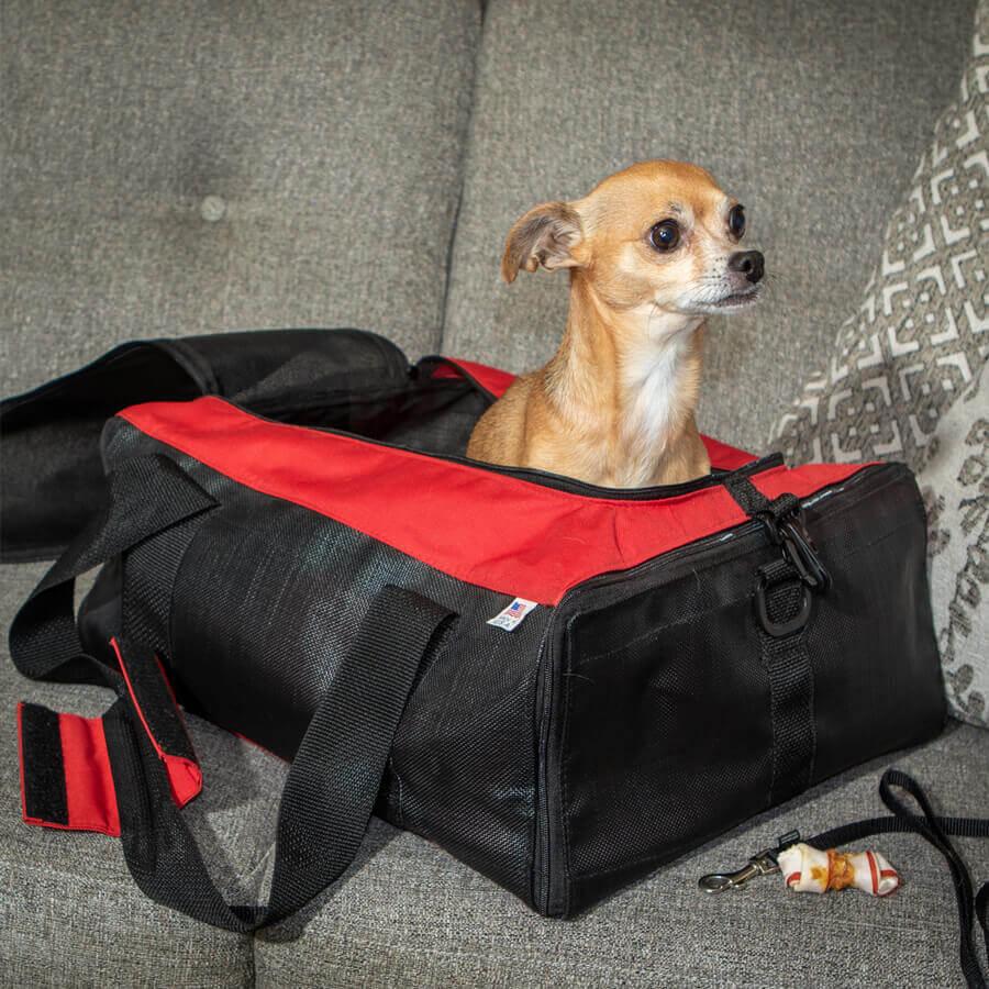 Custom Dog Carrier